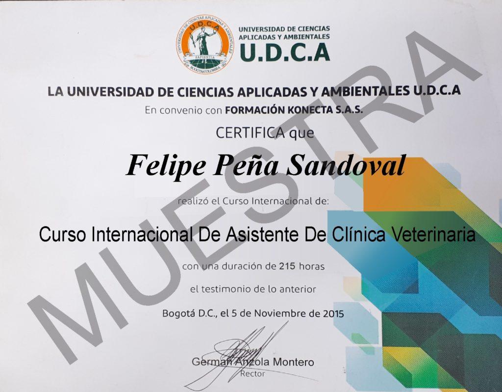 Diploma del curso de asistente de clínica veterinaria
