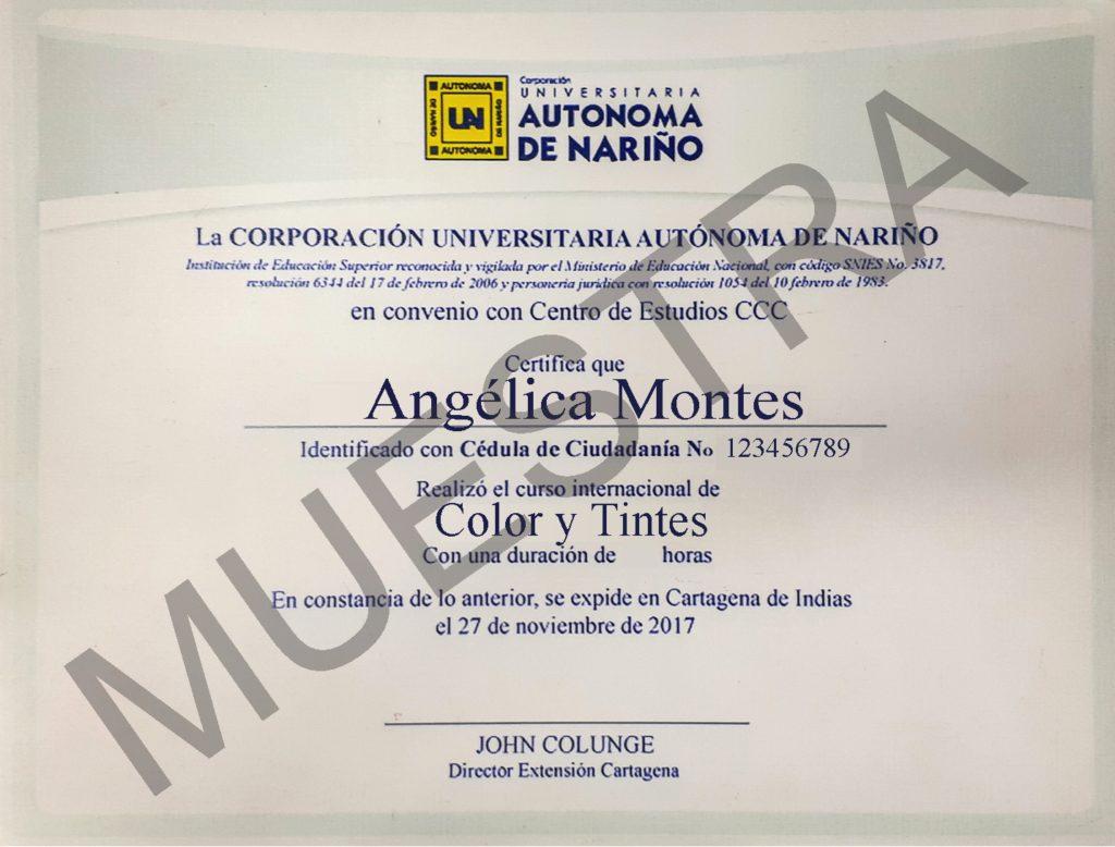 diploma del curso de color y tintes de cursos ccc
